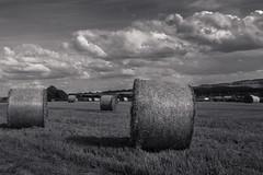 Heuballen (kai_litzenberg) Tags: bw field clouds canon landscape hay heu t3i ballen 17mm 600d 18135mm