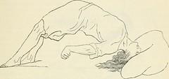 Anglų lietuvių žodynas. Žodis laches reiškia n teis.  ieškininė senatis; termino praleidimas 2 aplaidumas, nerūpestingumas lietuviškai.