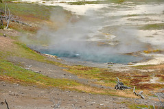 Catfish Geyser (late morning, 3 June 2014) 1 (James St. John) Tags: hot spring flood group basin springs catfish yellowstone wyoming geology geyser midway hotspring hotsprings geysers midwaygeyserbasin catfishgeyser floodgroup