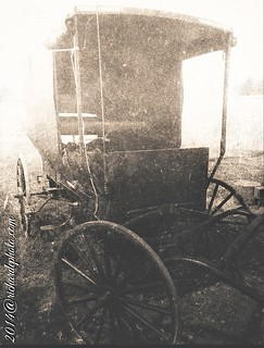 from the side of a road less traveled #vintage #old #buggy #amish #monochrome #bw
