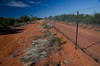The bilby fence, Currawinya National Park, Queensland, Australia (by N. Murray)