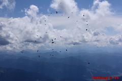 IMG_0167 (Pfluegl) Tags: wallpaper berg christian alpen dachstein steiermark hintergrund pfluegl ramsau dohlen dohle hchster kalkalpen bersterreich pflgl
