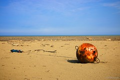 Beached Buoy