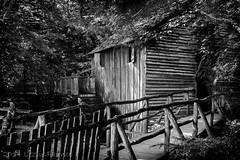Cades Cove- Smoky Mountains (lezlievachon) Tags: