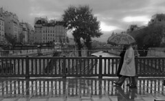 Pont au Double, Paris (Nico Geerlings) Tags: paris france rain seine umbrella 35mm couple bridges summicron bouquinistes strolling iledelacite quartierlatin pontaudouble nicogeerlings leicammonochrom