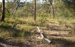 1201 Wheelbarrow Ridge Rd, Colo Heights NSW