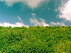 Cielo & Terra (In2ShФФT) Tags: trees sky earth sicily sicilia vegetazione samsungpro815 heavenandearth