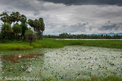 Srimukhalingam_68 (SaurabhChatterjee) Tags: india village shiva andhra srikakulam srimukhalingam siaphotography saurabhchatterjee siaphotographyin