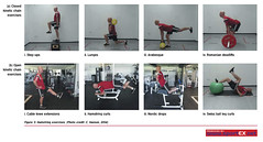 62MD24_1 (sportEX journals) Tags: rehabilitation hamstring sportsmedicine sportex sportsinjury sportexmedicine sportsrehabilitation