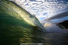 Esmerelda -- Backlit Barrel (Aaron Lynton) Tags: canon hawaii paradise barrel wave maui 7d spl lynton lyntonproductions