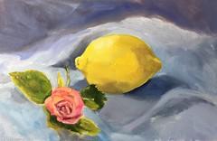 Rose and Lemon (Handwork Naturals) Tags: pink blue yellow day lemon rose edenscovillehart