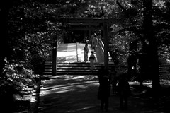 Deep in Ise Jingu, Ise, Japan (Job Homeless) Tags: streetsnap streetphotography blackandwhite monochorme people culture japan ise trinolassignment105mmf35 monotone leica m8 tradition travel temple