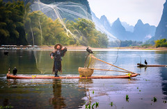 The Cormorant Fisherman (Matt Shiffler Photography) Tags: xingping china yangshuo fisherman fish fishing photojournalism portrait net mountain karst li river liriver