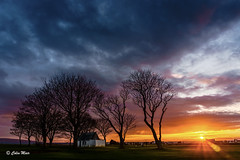 Lochgreen Sunset - 2017-03-05 17-56-18 - DSC01783-HDR (colin.mair) Tags: lochgreen troon sunset sun trees golf course ayrshire colourful sony ilce6000 golfer hdr