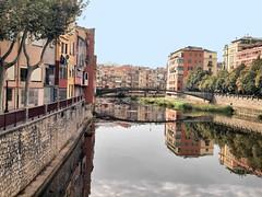 132 Girona river (saxonfenken) Tags: 1041s 1041 girona spain river buildings city reflections challengeyouwinner friendlychallenges perpetualunam pregamewinner