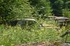 The old car Cemetery (saabrobz) Tags: cemetery car junk sweden ghost sverige junkyard scrapyard carcemetery båstnäs