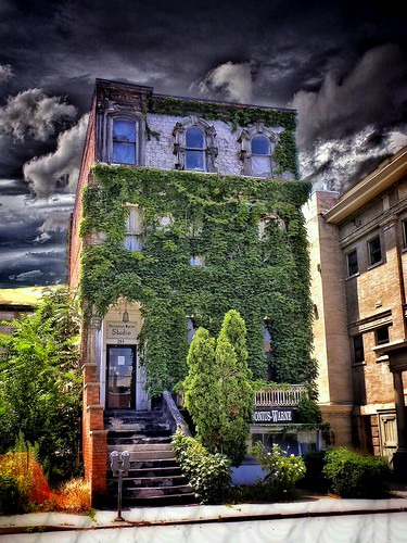 Elmira NY ~ Abandon ~ Personius-Warne Studio ~ Vines