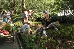 Na labuta (jubirubas) Tags: china shanghai