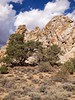 Inyo National Forest, Papoose Flat, Pinch Arch (darthjenni) Tags: california trip travel vacation landscape desert great basin mojave bishop owensvalley bigpine inyonationalforest inyomountains basinandrangeprovince 36e404