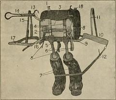 Anglų lietuvių žodynas. Žodis pack-frame reiškia pakuotės rėmas lietuviškai.