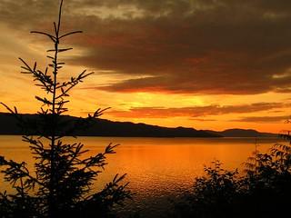 Alaska Salmon Fishing Lodge - Ketchikan 39