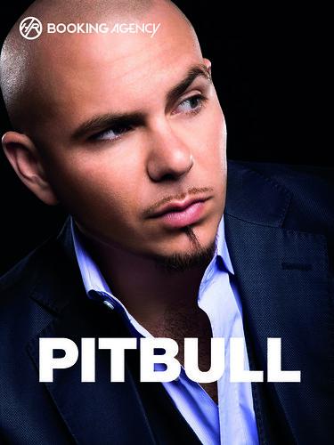 Pitbull_Druck