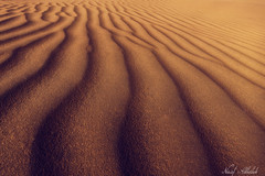 Golden Dunes! - Alsalmi Desert - Kuwait (AlkhashabNawaf) Tags: light shadow texture sahara canon landscape sand nikon desert empty dunes dune quarter kuwait بر البر nawaf الكويت صحراء رملية كانون نواف كثبان رمليه السالمي الخشاب alsalmi alkhashab