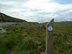 Four-mile post on Kintyre Way (Dunnock_D) Tags: uk unitedkingdom britain kintyre argyll kintyreway milepost post sign signpost number four hill heath heather road path scotland gb