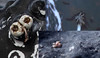 Whale parasites (Lacewing!) Tags: hey whale humpback crustacean parasite barnacle acta commensalism ectoparasite obligate
