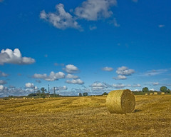 Conisbrough field of gold (harra1958) Tags: corn yorkshire farming hay