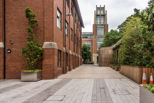 THE LIBRARY AT QUEENS UNIVERSITY IN BELFAST Ref-785