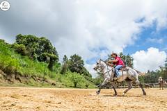 DSC08509 (J.M. Stelluti) Tags: horse club de caballos los venezuela campo ganado miranda teques vaqueros couching llaneros arrear stelluti photoluxes