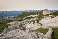 Rock formations on Hermine Trail (dataichi) Tags: travel usa nature rock alaska landscape rocks hiking hike denali