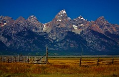 Other side of the fence (RWGrennan) Tags: mountain mountains west nature field fence landscape nationalpark ryan district grand historic gateway opening rockymountains wyoming teton tetons wy grandtetonnationalpark mormonrow grennan mormonbarn rwgrennan rgrennan