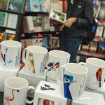 Birds in the bookshop
