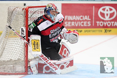 """DEL15 Kölner Haie vs. Thomas Sabo Ice Tigers 19.09.2014 018.jpg • <a style=""""font-size:0.8em;"""" href=""""http://www.flickr.com/photos/64442770@N03/15105235660/"""" target=""""_blank"""">View on Flickr</a>"""