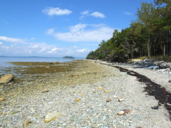 Heart Island At Low Tide (RonG58) Tags: pictures ocean new trip travel light sea sky usa color beach nature water clouds forest landscape geotagged island photography us photo spring woods day waves image photos live maine picture bluesky images photograph digitalcamera lowtide exploration seashore umi atlanticocean mori shima deerisle saltwater taikai mainecoast mizu laisla photooftheday picoftheday locan leau heartisland dieinsel fugifilm lafort elagua daswasser elocano dailynaturetnc12 rong58 derozean finepixhs50exr pwpartlycloudy