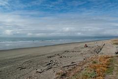 Not Many People About (Jocey K) Tags: sea newzealand christchurch sky beach water clouds sand driftwood digger newbrighton pegasusbay