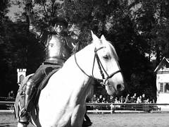 RenFest (andaelentari) Tags: horse monochrome rose fair knight renfair joust renaissance
