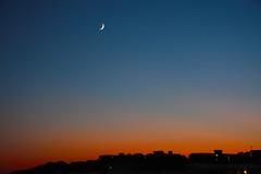 Moon Sunset