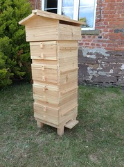 Our Four Windowed Warre beehive