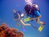 Clear Waters (DivePhoto) Tags: coral divers scuba cw kh reef pohtographer