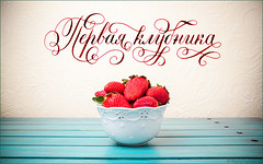 strawberry-w-photo (Mara Fribus) Tags: typography letters type lettering calligraphy copperplate