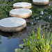 """Stepping Stones • <a style=""""font-size:0.8em;"""" href=""""http://www.flickr.com/photos/26088968@N02/14405758208/"""" target=""""_blank"""">View on Flickr</a>"""