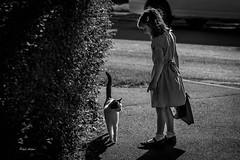 School Walk. (Paul Aston1977) Tags: life school summer portrait girl animal cat canon child dress heart daughter young somerset run lush inocent 700d beautaful