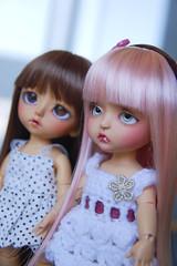Mavis + Pevensie (Chio-san) Tags: yellow doll vampire bat tan lea bjd mavis noa latidoll pevensie lati