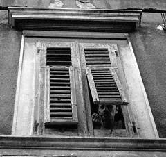 la pipe (asketoner) Tags: man window face pipe croatia split