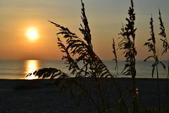 Sunrise, Melbourne Beach, FL (tr0mbley) Tags: reflection nature sunrise landscape nikon scenery florida melbourne fl indialantic d3100