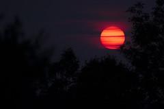 Life on Mars (flashfix) Tags: trees sunset sky usa cloud sun newyork nature lines america nikon unitedstatesofamerica silhouettes blues nightsky oranges eveningsky ontheroad mothernature pinks roadtrippin 2014 ontheroadagain viewfromtheroad d7000 nikond7000 55mm300mm 2014inphotos july252014