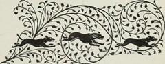 Anglų lietuvių žodynas. Žodis white-herring reiškia n šviežia silkė (ne rūkyta, ne sūdyta) lietuviškai.